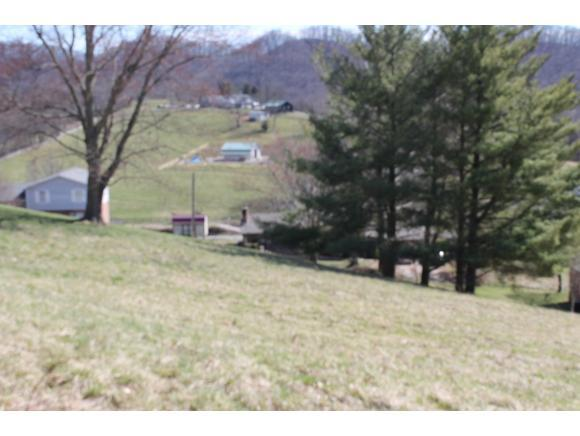 0 Bexley Drive, Bristol, VA 24201 (MLS #418100) :: Highlands Realty, Inc.