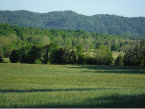 1475 Crumley Road, Greeneville, TN 37745 (MLS #418408) :: Highlands Realty, Inc.