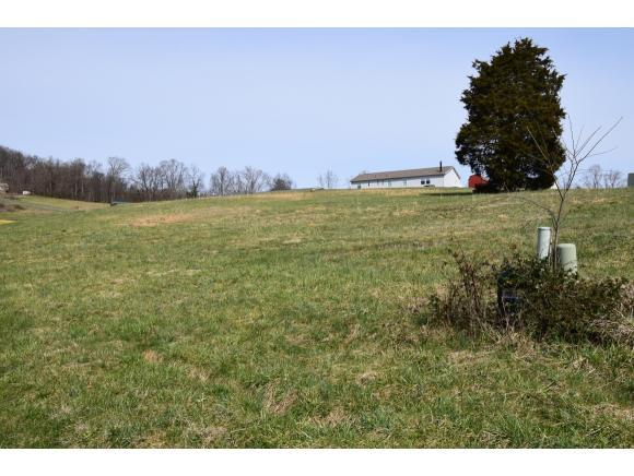 Lot 37 Rolling Hills Dr, Church Hill, TN 37642 (MLS #418490) :: Conservus Real Estate Group
