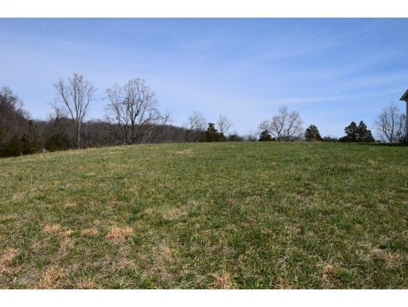 Lot 12 Rolling Hills Dr, Church Hill, TN 37642 (MLS #418491) :: Conservus Real Estate Group