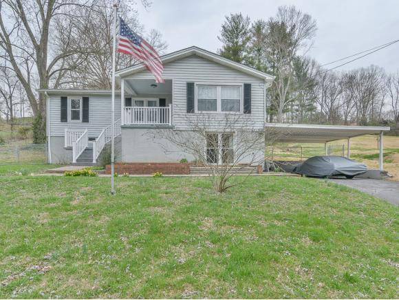 1415 Lakeside Lane, Kingsport, TN 37663 (MLS #418562) :: Conservus Real Estate Group