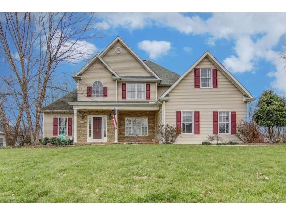 300 Southridge, Blountville, TN 37617 (MLS #418580) :: Conservus Real Estate Group