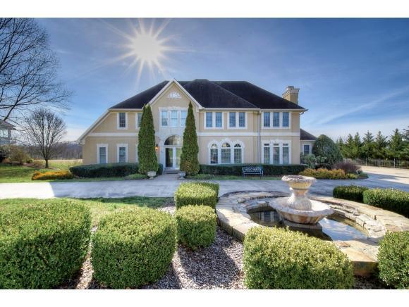 110 Magnolia Ridge Dr, Jonesborough, TN 37659 (MLS #418649) :: Conservus Real Estate Group