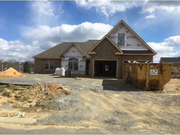 3119 Allison Meadows, Piney Flats, TN 37686 (MLS #418823) :: Conservus Real Estate Group
