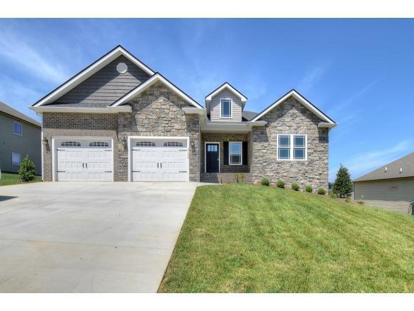 1144 Savin Falls, Gray, TN 37615 (MLS #418940) :: Conservus Real Estate Group