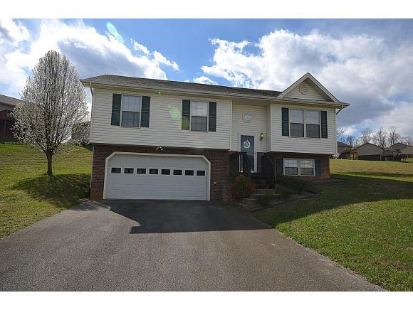 1121 Meadow Creek Lane, Jonesborough, TN 37659 (MLS #418959) :: Conservus Real Estate Group