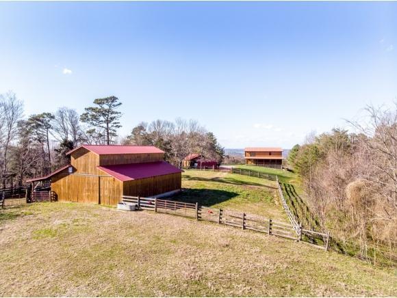 777 Cedar Creek Cave Rd, Greeneville, TN 37743 (MLS #419146) :: Conservus Real Estate Group