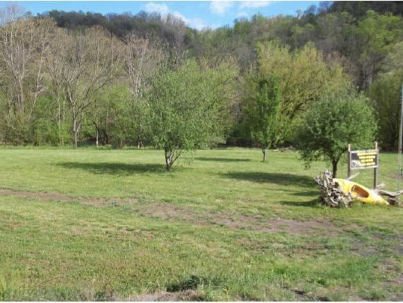Par 8 Clinch  River Hwy, Duffield, VA 24244 (MLS #419733) :: Bridge Pointe Real Estate