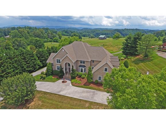 113 Chestnut Ridge Drive, Jonesborough, TN 37659 (MLS #419785) :: The Baxter-Milhorn Group