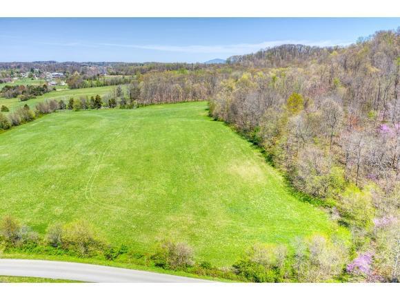 0 Bulldog Miller, Jonesborough, TN 37659 (MLS #420044) :: Bridge Pointe Real Estate