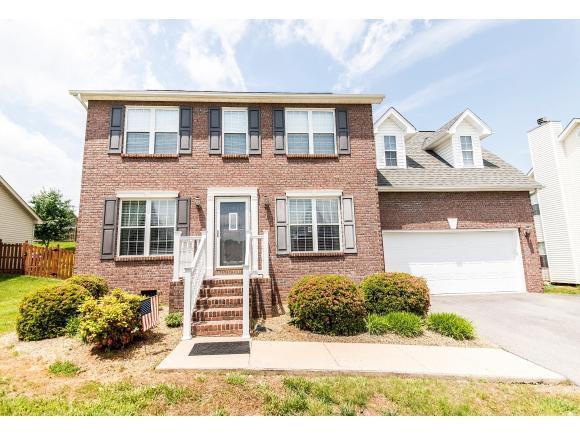 216 Leslie Court, Bristol, TN 37620 (MLS #420076) :: Bridge Pointe Real Estate