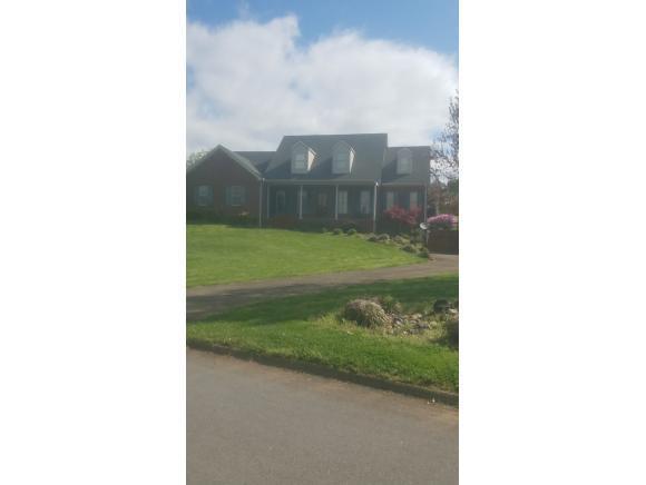 20 Venice Ln, Greeneville, TN 37745 (MLS #420157) :: Bridge Pointe Real Estate
