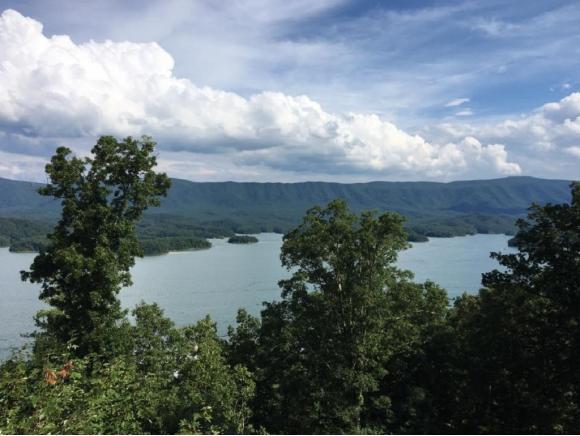 1985 Wilderness Trail, Bristol, TN 37620 (MLS #420169) :: Bridge Pointe Real Estate