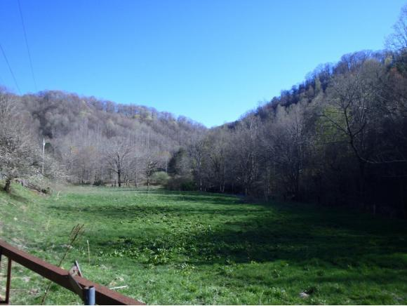 XXX Tiger Creek Rd, Roan Mountain, TN 37687 (MLS #420290) :: Highlands Realty, Inc.
