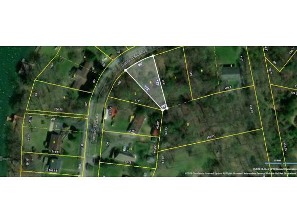 Lot 8 Gottland Shoals Road, Blountville, TN 37617 (MLS #420362) :: Highlands Realty, Inc.