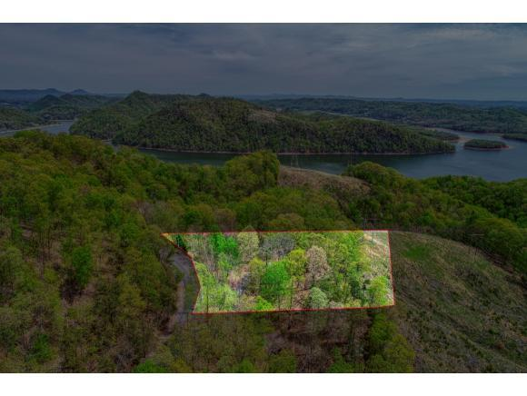 223 Chelaque Way, Mooresburg, TN 37811 (MLS #420369) :: Highlands Realty, Inc.