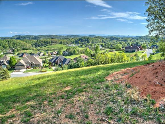 220 Old Island Trail, Kingsport, TN 37664 (MLS #420727) :: Conservus Real Estate Group