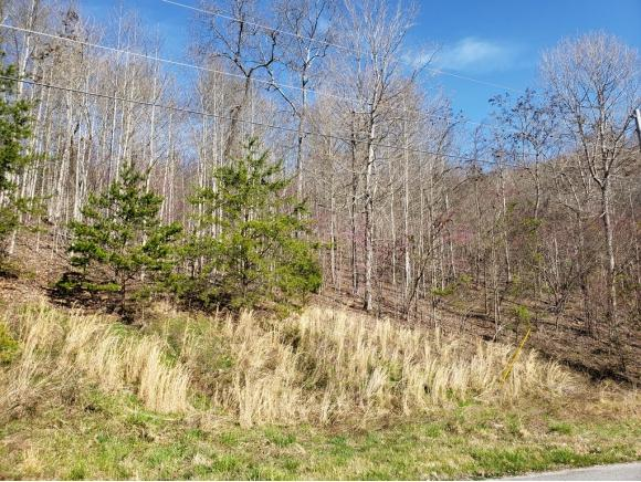 Lot 576 Whistle Valley Rd, New Tazewell, TN 37825 (MLS #420914) :: Bridge Pointe Real Estate