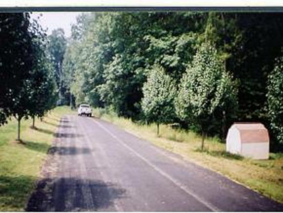 LOT 4 Crystal Lane, Unicoi, TN 37692 (MLS #421567) :: The Baxter-Milhorn Group