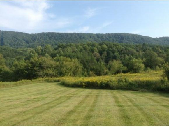 3569 Clinch Valley Road, Thorn Hill, TN 37881 (MLS #421583) :: Highlands Realty, Inc.