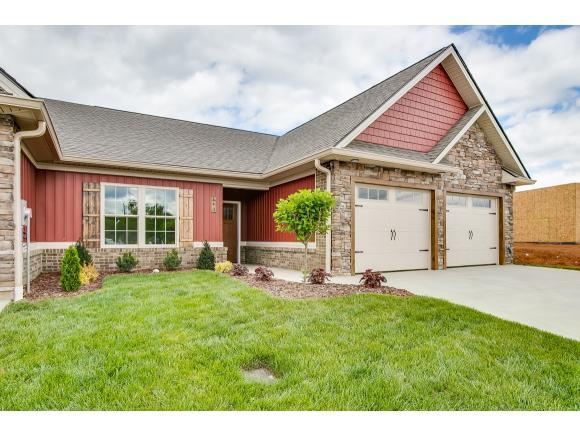 163 Hacker Martin Dr -, Gray, TN 37615 (MLS #421596) :: Bridge Pointe Real Estate