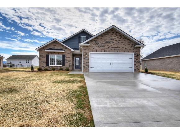 1011 Osler Ct, Piney Flats, TN 37686 (MLS #421608) :: Highlands Realty, Inc.