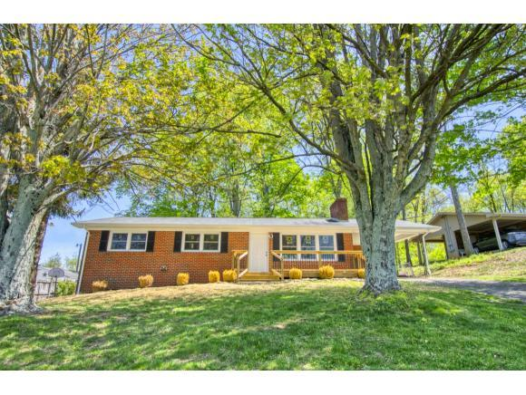 112 Hales Chapel Rd, Gray, TN 37615 (MLS #421636) :: Highlands Realty, Inc.