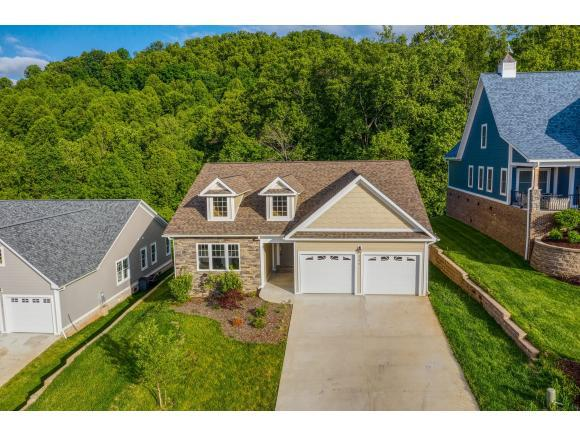 266 Old Island Trail, Kingsport, TN 37664 (MLS #421795) :: Conservus Real Estate Group