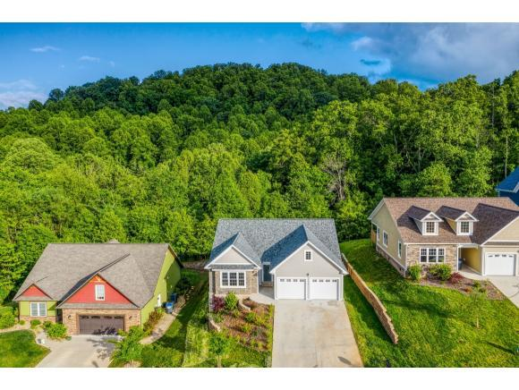 270 Old Island Trail, Kingsport, TN 37664 (MLS #421798) :: Conservus Real Estate Group