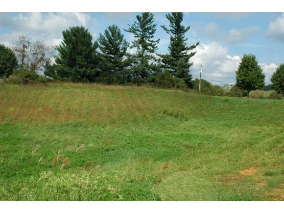 TBD Winterham Drive, Abingdon, VA 24211 (MLS #421895) :: Conservus Real Estate Group
