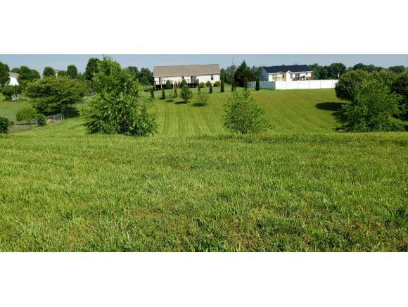 2063 Buttercup Lane, Limestone, TN 37681 (MLS #421905) :: Highlands Realty, Inc.