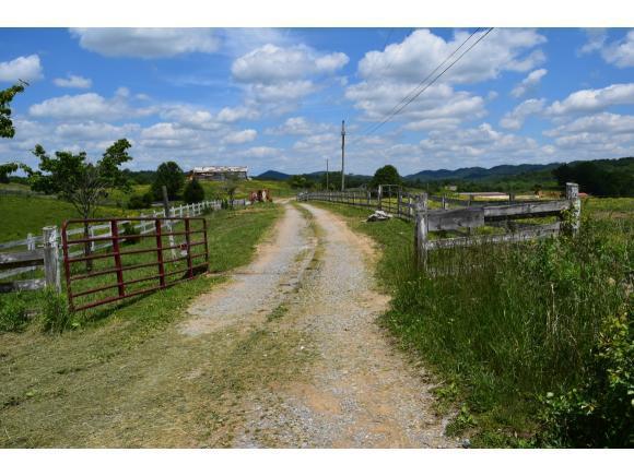 290 Roaring Fork Rd, Greeneville, TN 37745 (MLS #421950) :: Highlands Realty, Inc.
