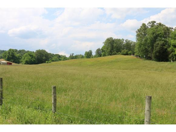 000 Old Stage Road, Rogersville, TN 37857 (MLS #421968) :: Highlands Realty, Inc.