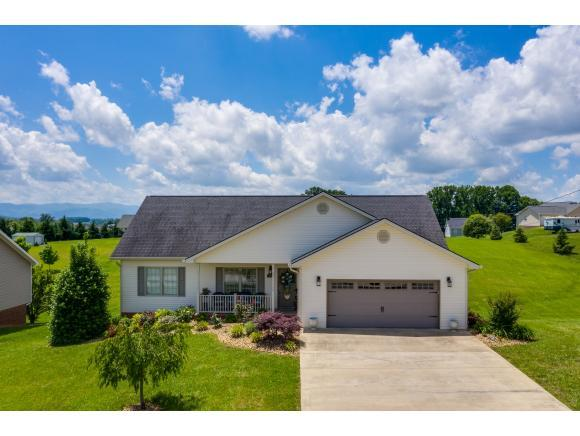575 Sand Ridge Circle, Jonesborough, TN 37659 (MLS #421989) :: Conservus Real Estate Group