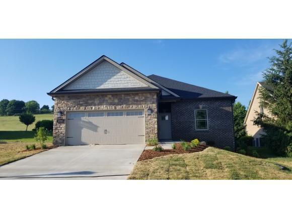 1090 Embassy Row, Johnson City, TN 37601 (MLS #422068) :: Conservus Real Estate Group