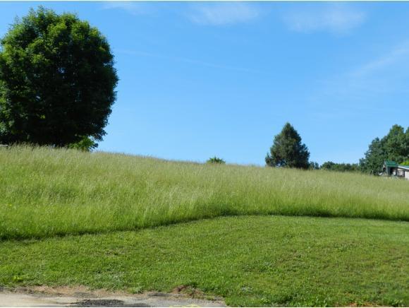 0 Cedar Hills, Church Hill, TN 37642 (MLS #422095) :: Conservus Real Estate Group