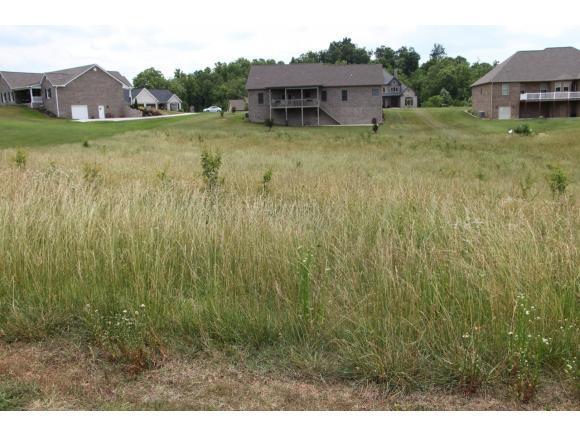 209 Lakefront Lane, Bluff City, TN 37618 (MLS #422390) :: Bridge Pointe Real Estate