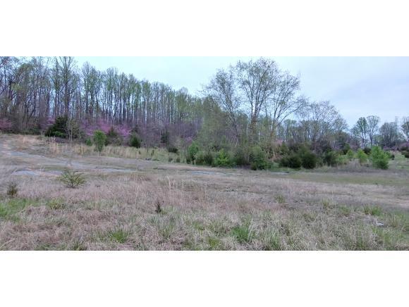 0 Elizabethton Hwy, Elizabethton, TN 37643 (MLS #422835) :: Bridge Pointe Real Estate