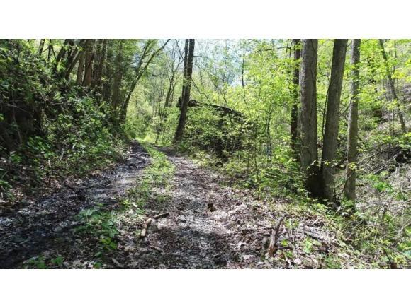 0 Nelson Hollow Rd., Erwin, TN 37692 (MLS #422907) :: Highlands Realty, Inc.
