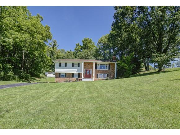 352 Bell St, Blountville, TN 37617 (MLS #422948) :: Bridge Pointe Real Estate