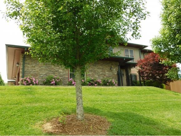 357 Monroe Private Drive N/A, Bristol, TN 37620 (MLS #422955) :: The Baxter-Milhorn Group