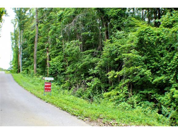TBD Taylor Avenue, Elizabethton, TN 37643 (MLS #423046) :: Bridge Pointe Real Estate