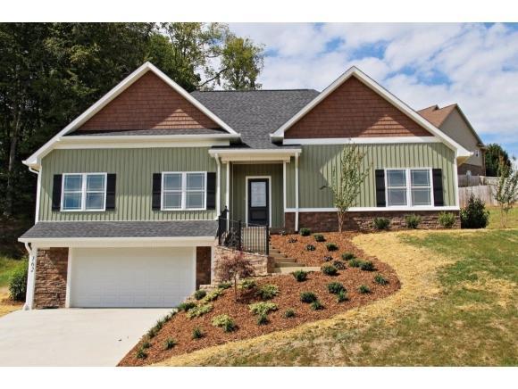 162 Cameron Court, Jonesborough, TN 37659 (MLS #423058) :: Bridge Pointe Real Estate
