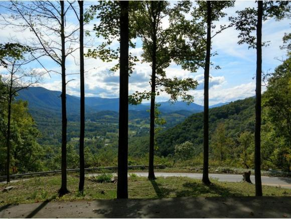 6446 Powell Valley Road, Big Stone Gap, VA 24219 (MLS #423069) :: Conservus Real Estate Group