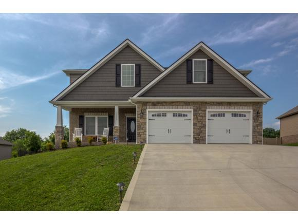1220 Savin Falls, Gray, TN 37615 (MLS #423119) :: The Baxter-Milhorn Group