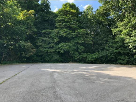 TBD Henry's Ln, Bristol, VA 24202 (MLS #423547) :: Highlands Realty, Inc.