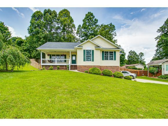 166 Nicole Drive, Mount Carmel, TN 37645 (MLS #423563) :: Conservus Real Estate Group