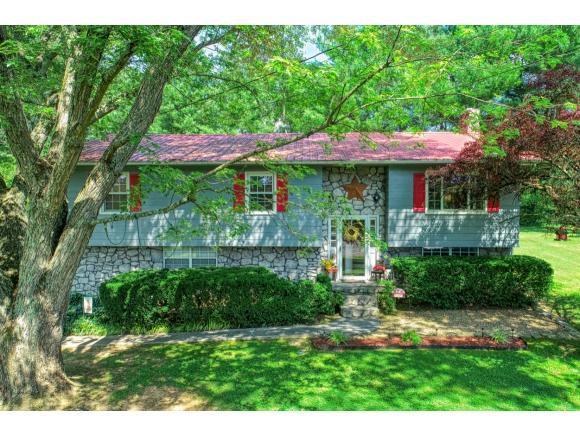 625 Skyview Drive, Rogersville, TN 37857 (MLS #423779) :: Highlands Realty, Inc.