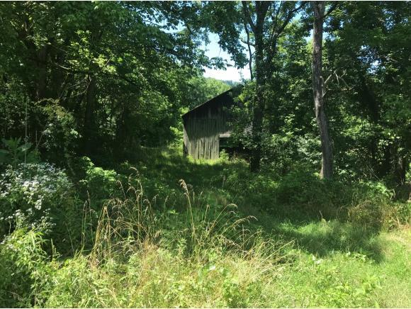 TBD Sugar Run Rd, Jonesville, VA 24263 (MLS #423854) :: Conservus Real Estate Group