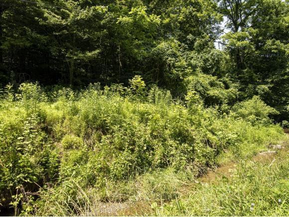 188 Screech Owl Drive, Gate City, VA 24251 (MLS #423875) :: Bridge Pointe Real Estate